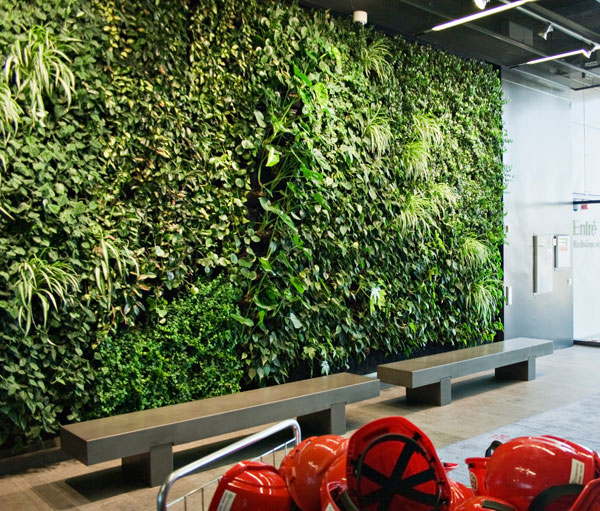 Plant wall design