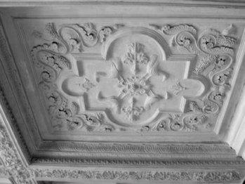 Plaster And Tin Ceiling